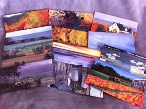 12 envelopes