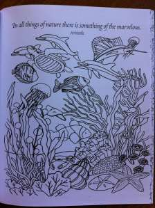 colouring book.5