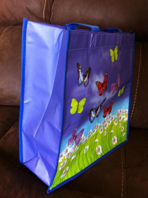 butterfly bag5